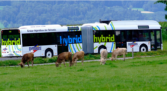 Hybrid buses reduced